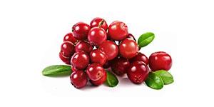 Cranberry Surprise